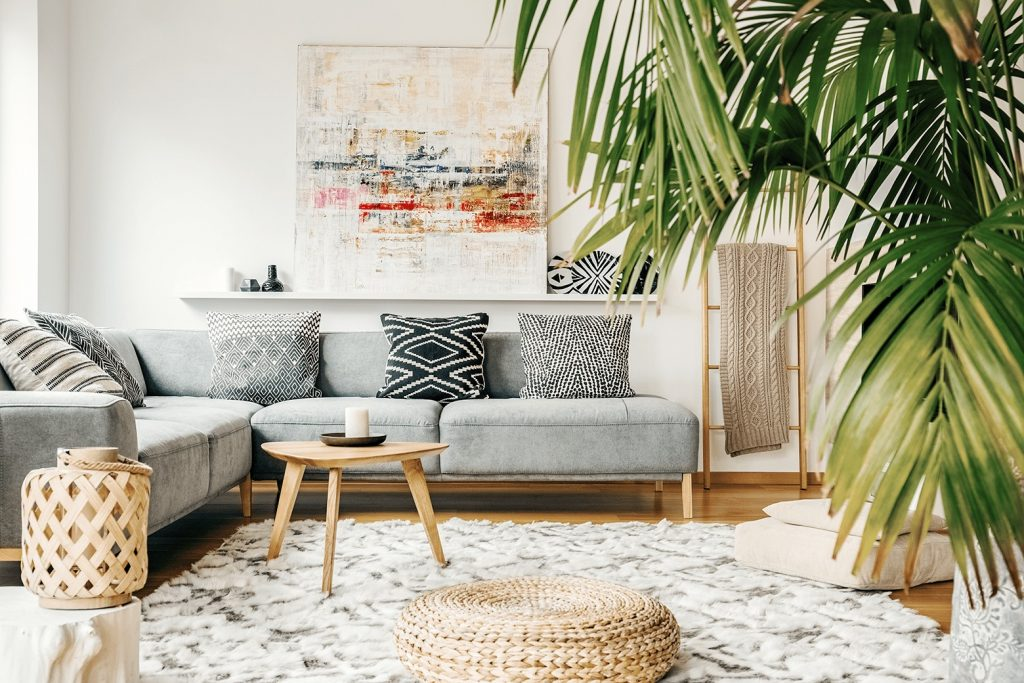 modern home decor with plants and couch pillows
