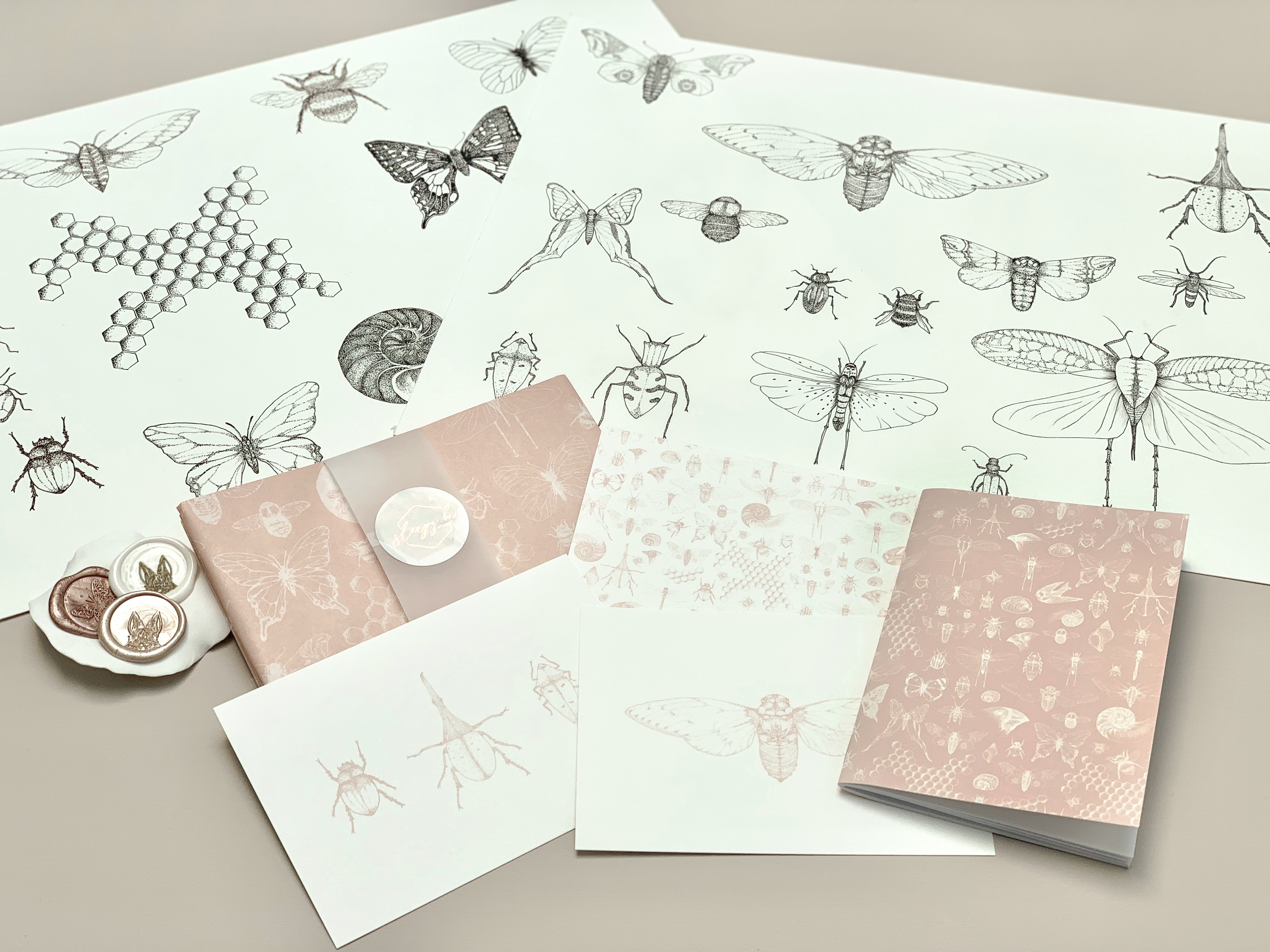 Charlotte's inspiration comes from all over her hometown of Cambridge. Here's the beginnings of her Darwin Collection!